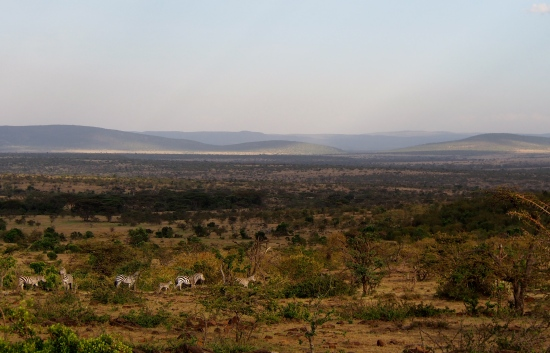 Mara Naboisho Camp